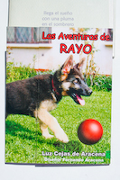 AVENTURAS DE RAYO, LAS