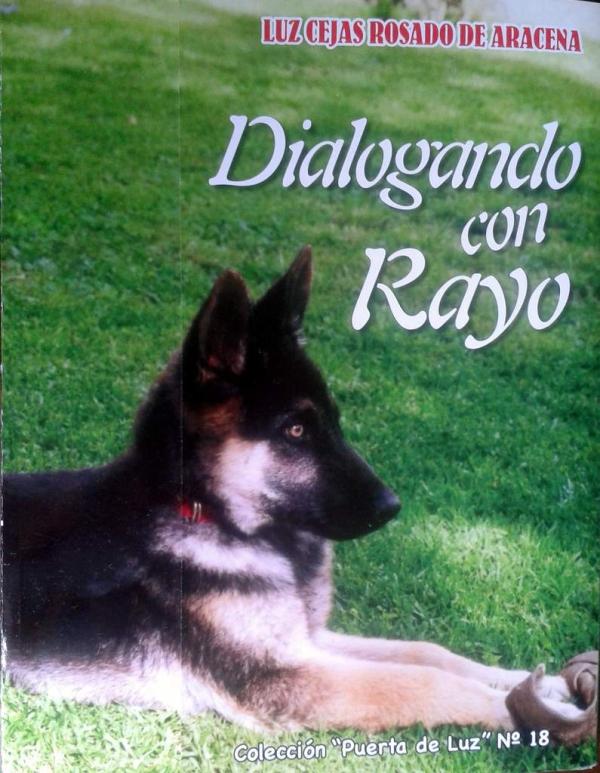 DIALOGANDO CON RAYO