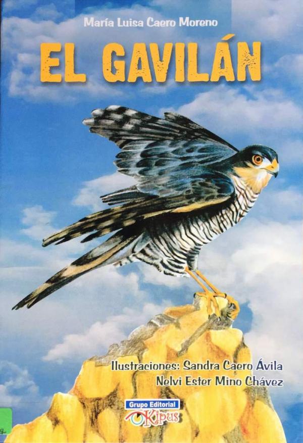 GAVILÁN, EL