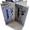 """AMAZONINA (TAPA) Técnica: Grabado. Año: 2006. Libro """"Amazonina"""" de Irina Sabatier."""